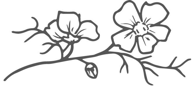 Wildflower Logo Detail